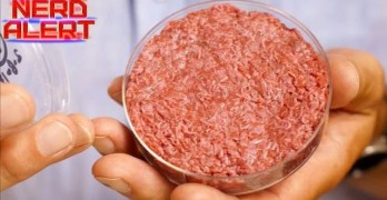Would You Try A Lab-Grown Burger Now That It's Affordable?